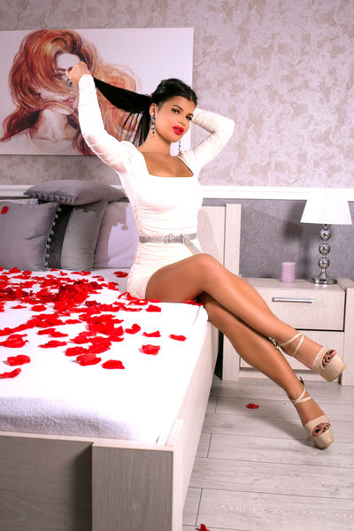 Dashing Carla - Escort Girl from Springfield Massachusetts