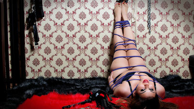 Your Fetish Emily - Escort Girl from Springfield Illinois